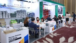 RoK remains largest FDI investor in VN