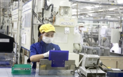 Foreign investors pour nearly US$ 31 billion into VN